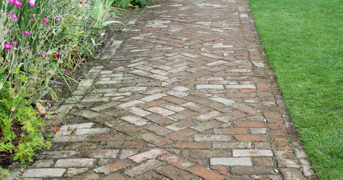 How To Kill And Prevent Sidewalk And Patio Moss