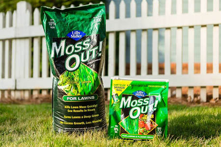 Moss Out products in yard